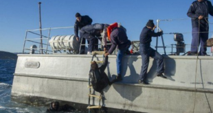 البحرية الملكية تنقذ 71 مهاجرا عرض ساحل طنجة